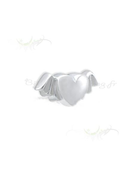 Un petit coeur et ses deux ailes - piercing